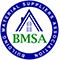 BMSA logo in blue white and greeen